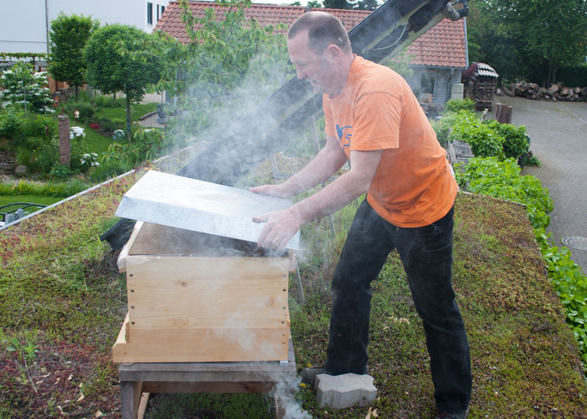 bienenvolk smoker